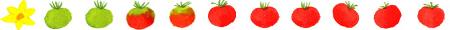トマトライン